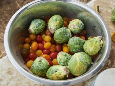 Ronda Rousey vegetables