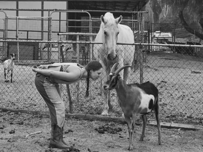 Ronda Rousey horse and goat