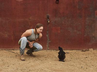 Ronda Rousey Silkie chicken