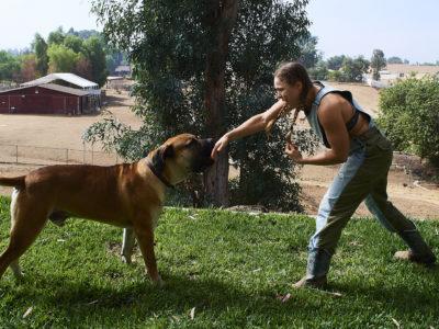 Ronda Rousey chunk dog