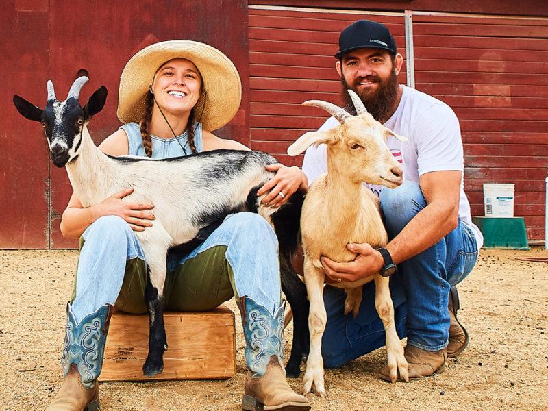 Ronda Rousey Travis Browne goats