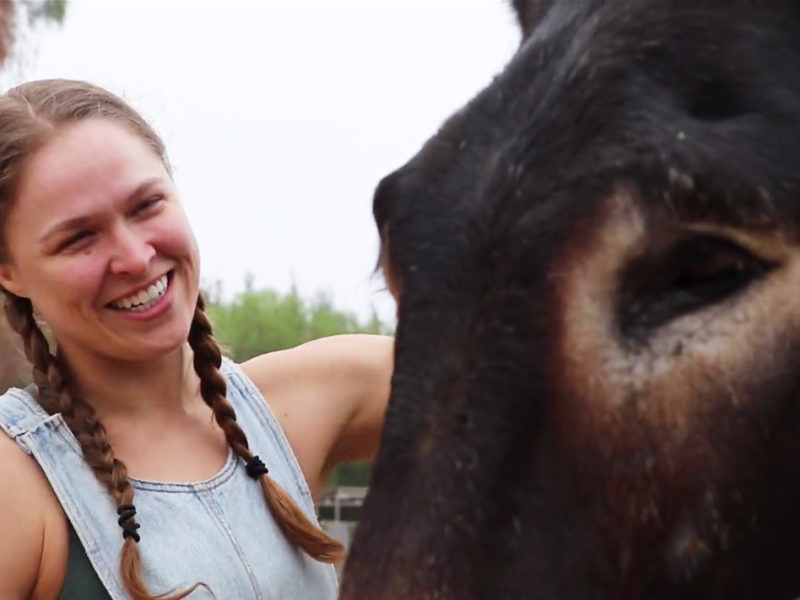 Ronda Rousey doneky browsey acres