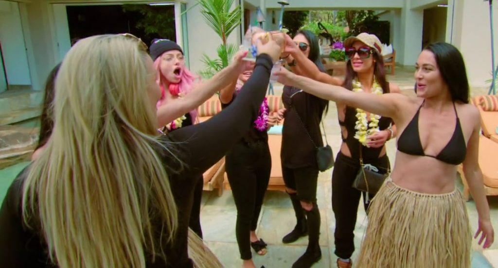 the cast of 'Total Divas' (source: 'Total Divas')