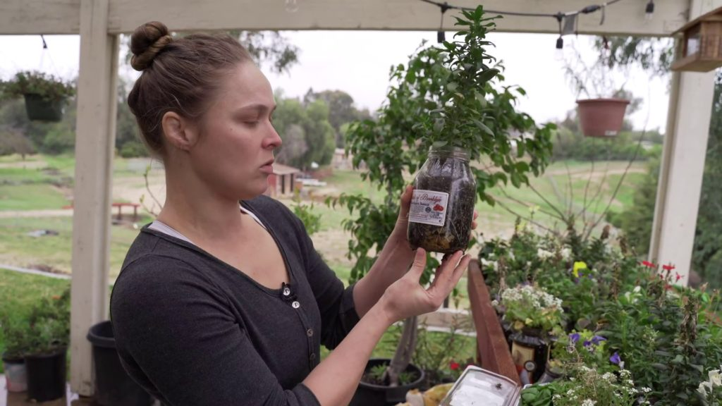 Ronda Rousey and her jar garden